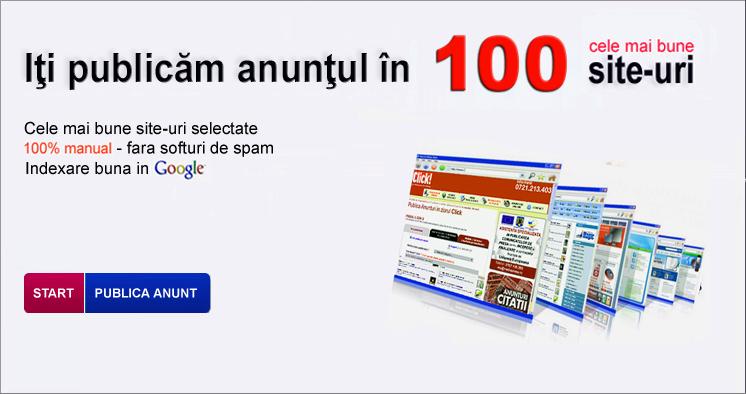 Locuri de munca Alba Iulia Online-marketing-&-customer-success-manager